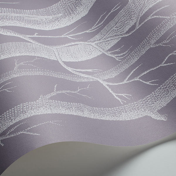Cole & Son - New Contemporary II - Woods in Ivory & Lilac