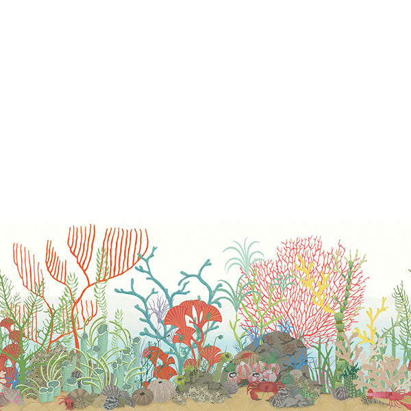 Cole & Son - Whimsical - Archipelago Border - Multi