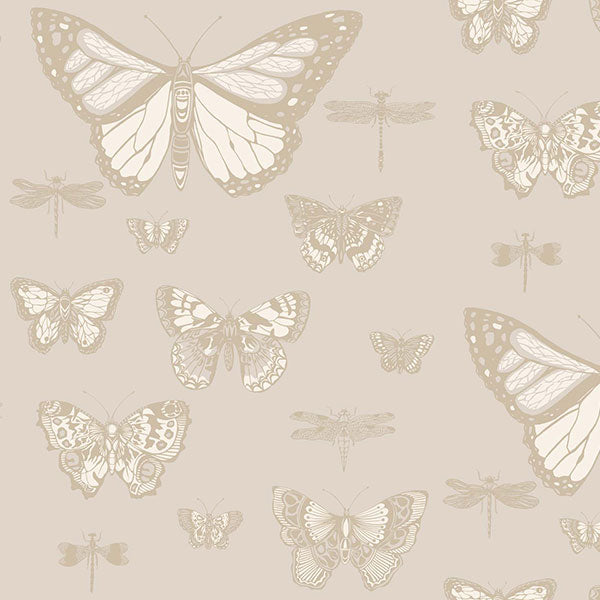 Cole & Son - Whimsical - Butterflies & Dragonflies in Grey