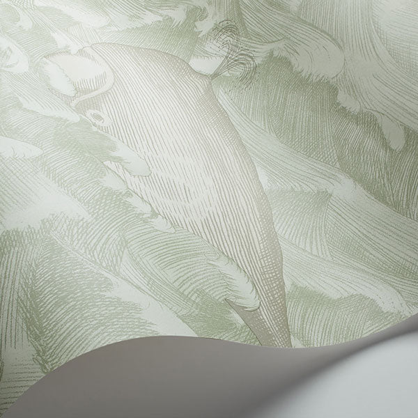 Cole & Son - Whimsical - Melville in Green