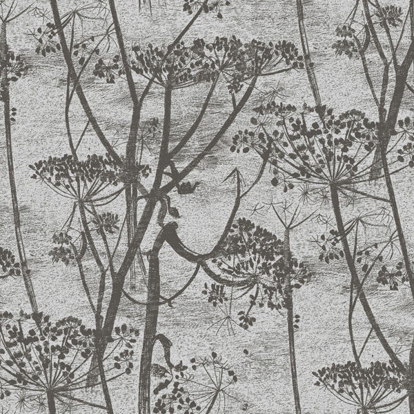 Cole & Son - Contemporary Restyled - Cow Parsley at www.vertigohome.us