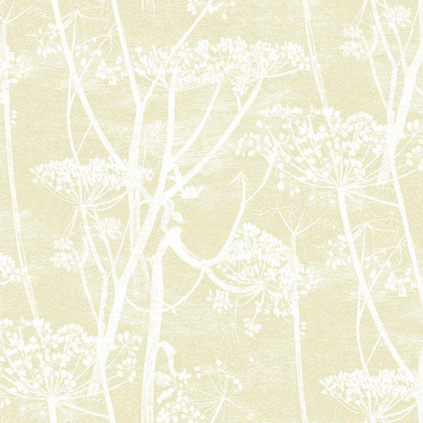 Cole & Son - Contemporary Restyled - Cow Parsley - Vertigo Home
