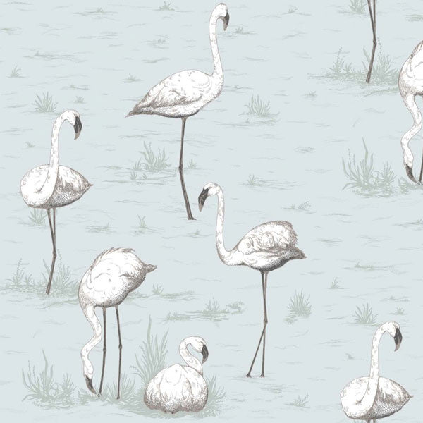 Cole & Son - Contemporary Restyled - Flamingos - Vertigo Home