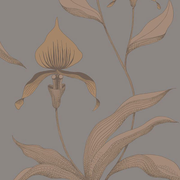 Cole & Son - Contemporary Restyled - Orchid - Vertigo Home