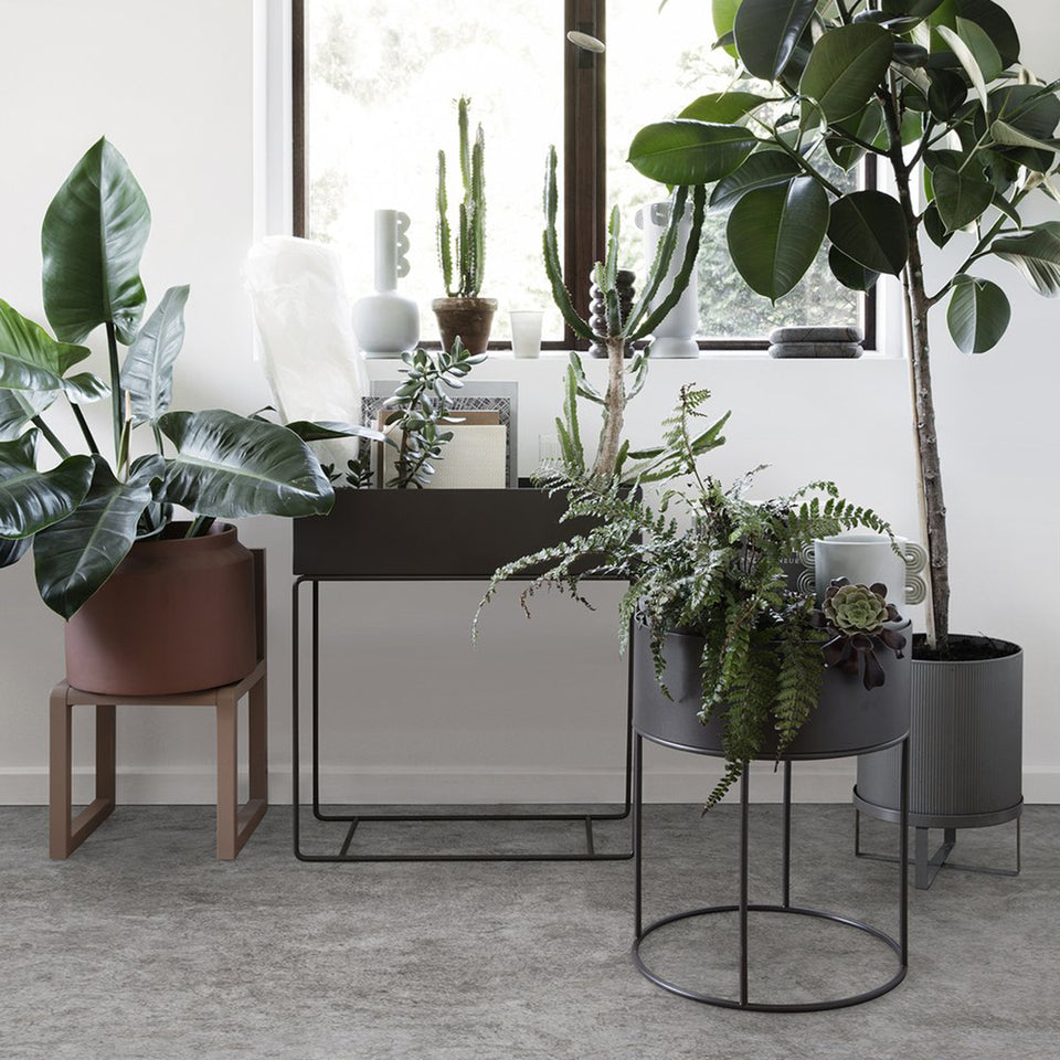 Plant Box - Black by Ferm Living