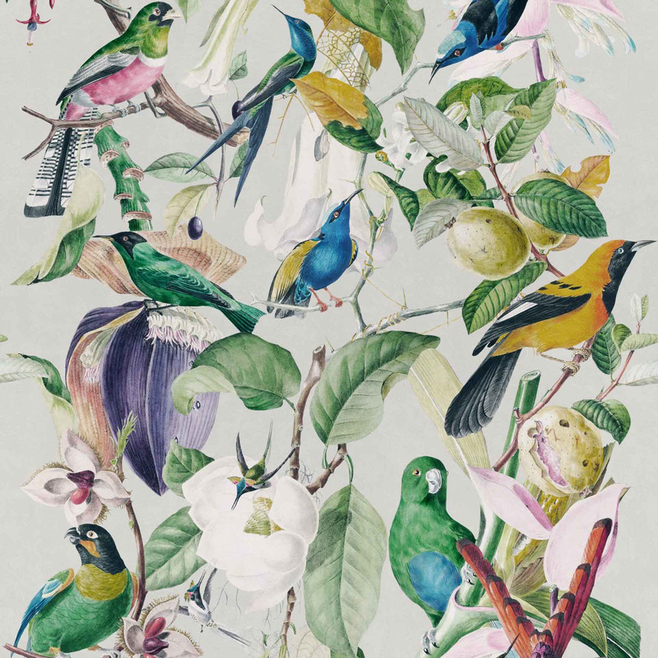 Tropical Birds Wallpaper by MINDTHEGAP