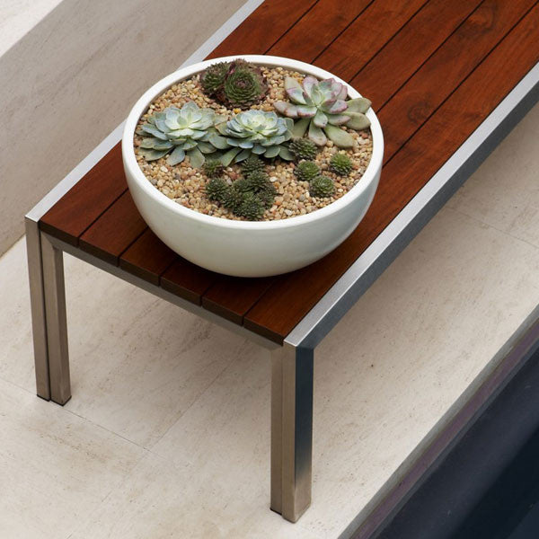 Case Study Large Bowl w/ Plinth
