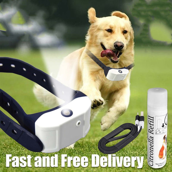 Citronella Rechargeable Dog Collar