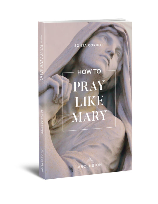 How To Pray Like Mary [Book]