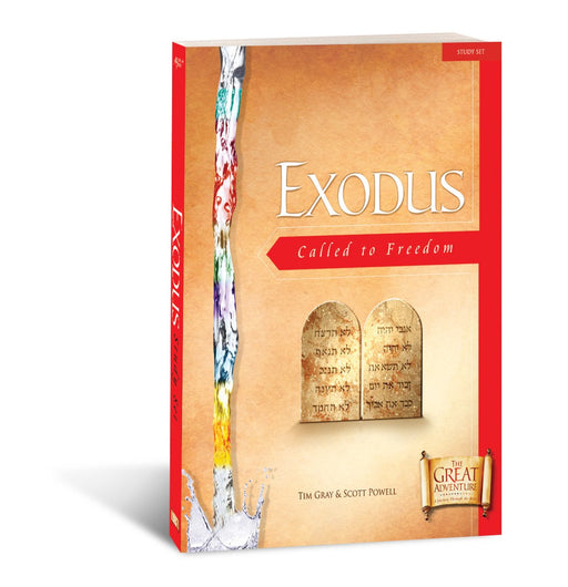 Exodus: Called to Freedom, Workbook