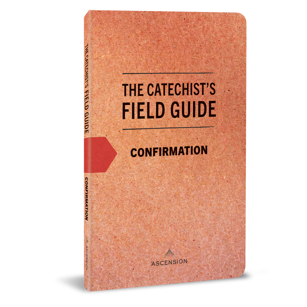 The Catechist's Field Guide to Confirmation