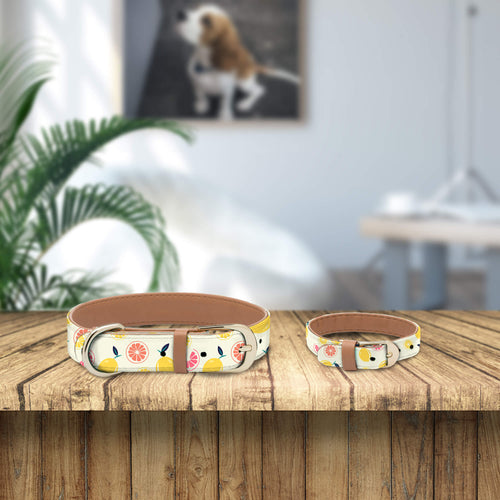 Fruit Collar and Bracelet Bundle