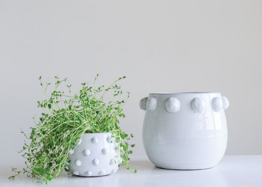 Dotted Terra Cotta Planter