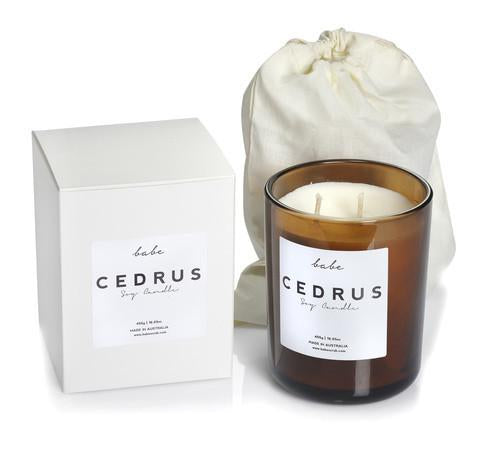 Cedrus Luxury Soy Candle