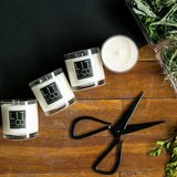 Macintosh Apple All Natural Soy Candle