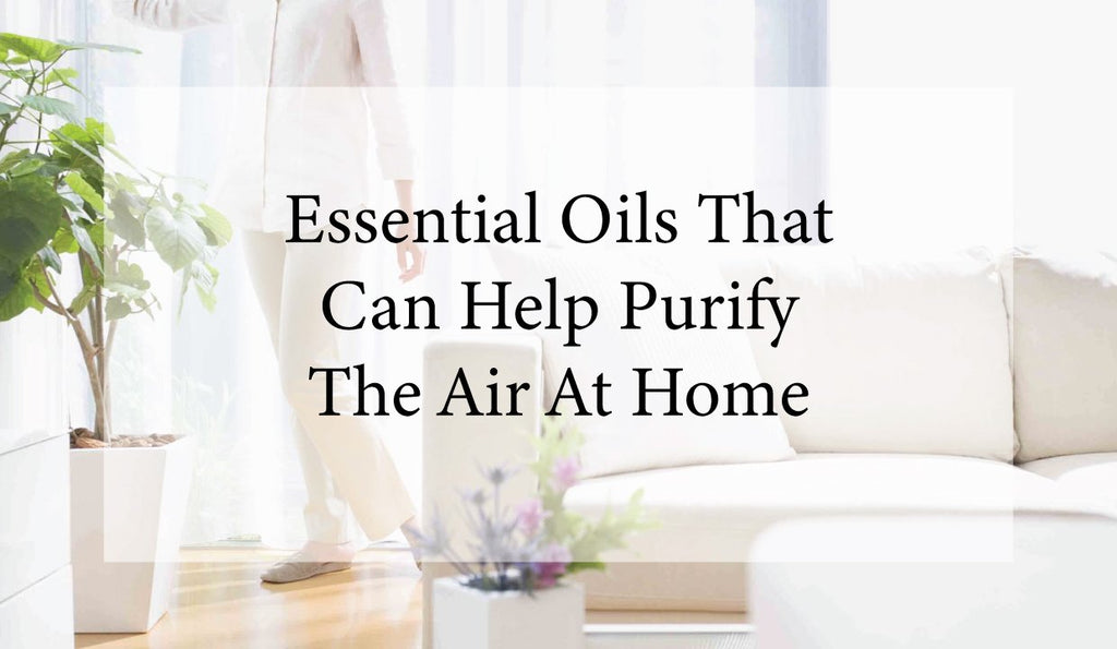 Essential Oils That Can Help Purify The Air At Home