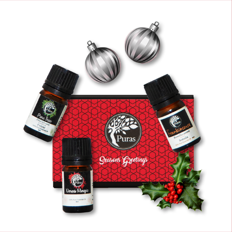 Xmas Package Set 6 : Christmas Celebration