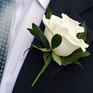 Boutonniere - Rose - Baltimore