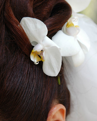 Hair Accent - Orchids - Baltimore