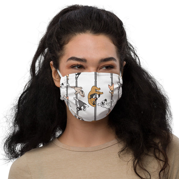Dogs face mask
