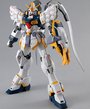 Load image into Gallery viewer, MG 1/100 SANDROCK CUSTOM EW