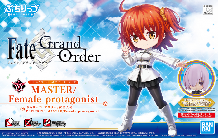 Petitrits Fate Grand Order Master Female Protagonist