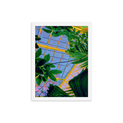 Botanical Jazz Framed Print