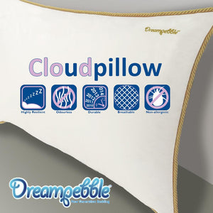 Dreampebble Cloud Pillow