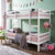Tomato KidZ Munich Single Low Bunk Bed (No trundle)