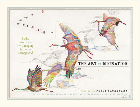 Art of Migration: Birds, Insects, and the Changing Seasons in Chicagoland