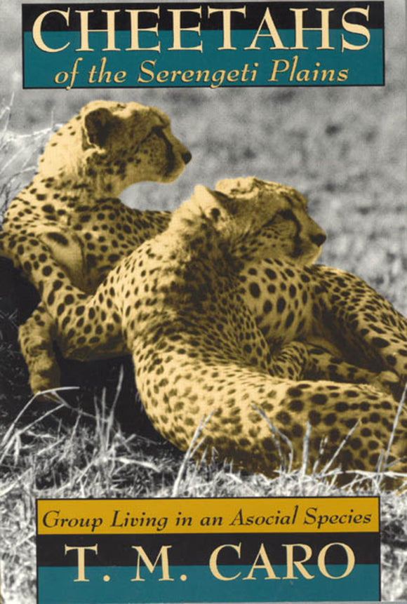 Cheetahs of the Serengeti Plains: Group Living in an Asocial Species