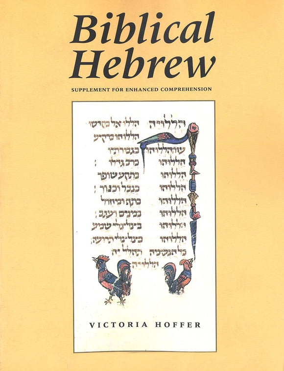 Biblical Hebrew 2ed (Supplement for Advanced Comprehension)