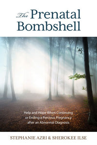 Prenatal Bombshell: Help and Hope When Continuing or Ending a Precious Pregnancy After an Abnormal Diagnosis