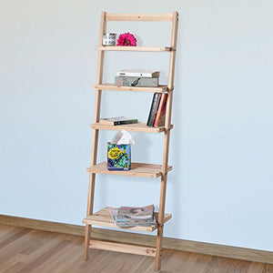 5-Tier Decorative Leaning Ladder Shelf - Burnt Spaces
