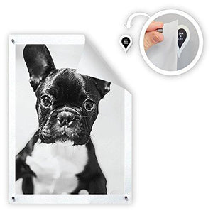 16 Pc Damage Free Magnetic Poster and Picture Hangers - Burnt Spaces