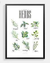 Load image into Gallery viewer, Herbs Canvas Print