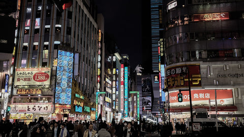 Kabukicho | japan information