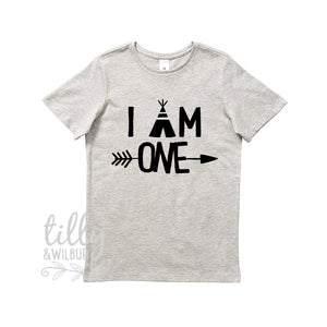 I Am One Birthday T-Shirt, 1st Birthday Gift, First Birthday Tee, Boho Design With Arrow, Teepee, Grey Cotton Short Sleeve Shirt, Cake Smash