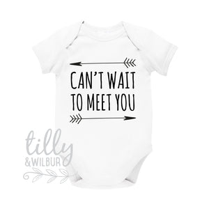 Can't Wait To Meet You Baby Bodysuit, Pregnancy Announcement, Photo Prop Pregnancy Reveal, Worth The Wait, We're Having A Baby, Pregnant