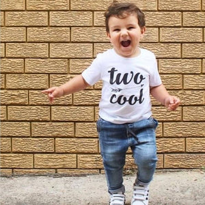 Two Cool Boys T-Shirt, Birthday Boy TShirt, Second Birthday Gift, 2nd Birthday, White Cotton Short Sleeve Tee With Boho Arrow Design