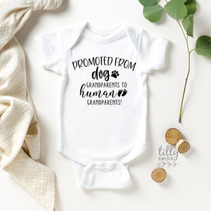 Promoted From Dog Grandparents To Human Grandparents Pregnancy Announcement Bodysuit