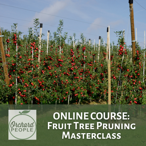 Fruit Tree Pruning Masterclass Online Course