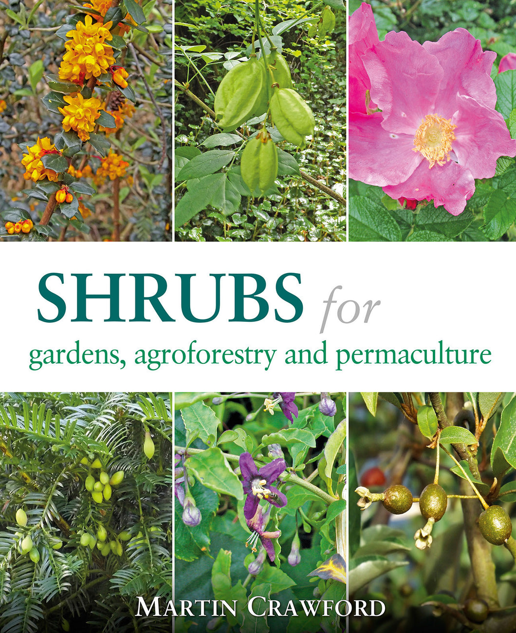 Shrubs for Gardens, Agroforestry, and Permaculture by Martin Crawford
