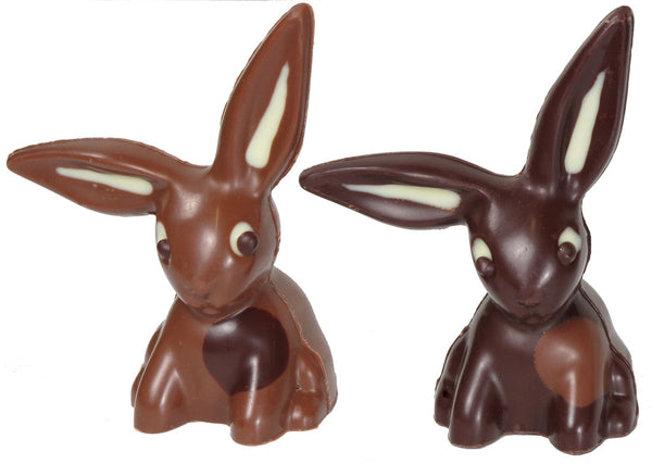 Easter Lop-Eared Rabbit
