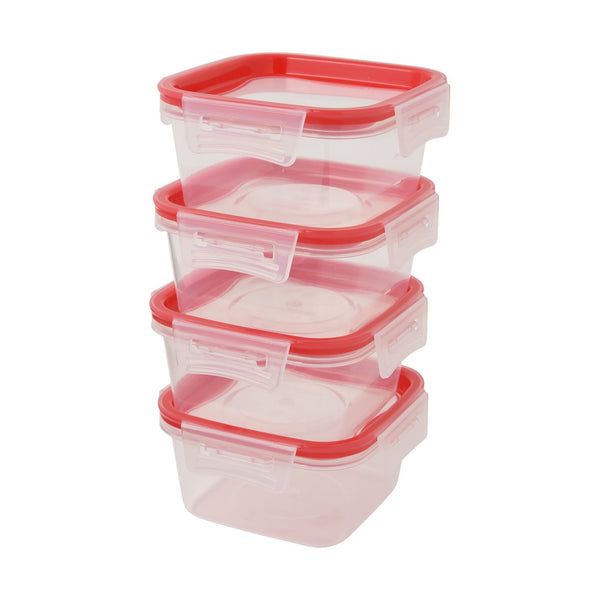 FOOD Container 4Pset Small
