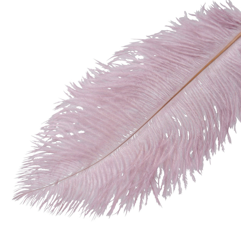 BIG FEATHER PEN PURPLE