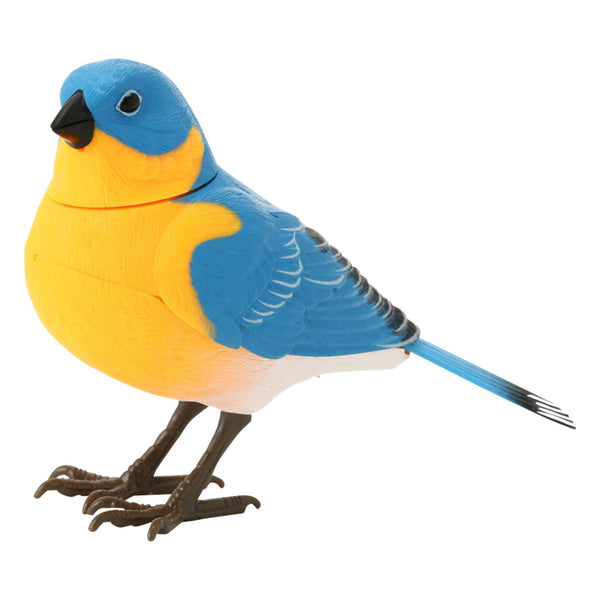 MOTION DETECTOR Music Bird Blue