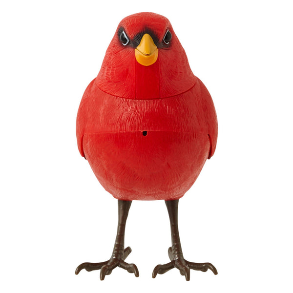 MOTION DETECTOR Music Bird Red