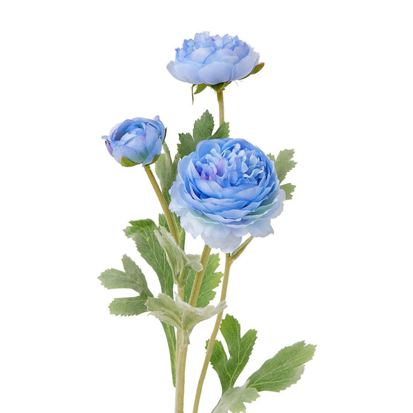 ARTFLOWERRANUNCULUS Dark Blue