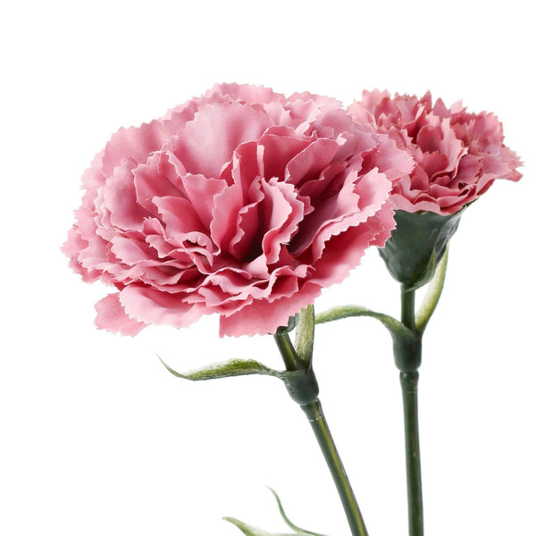 21SS ART FLOWER CARNATION  PINK
